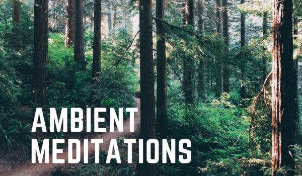 Wind Down This Weekend With Ambient Meditations S2 Vol 48 – Rena Jones
